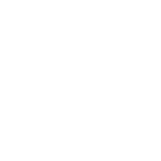 Bethnal Student Academy Logo